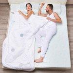 Стеганое одеяло с терморегулирующими вставками TRELAX Thermo Control (двуспальное, 172х205 см)